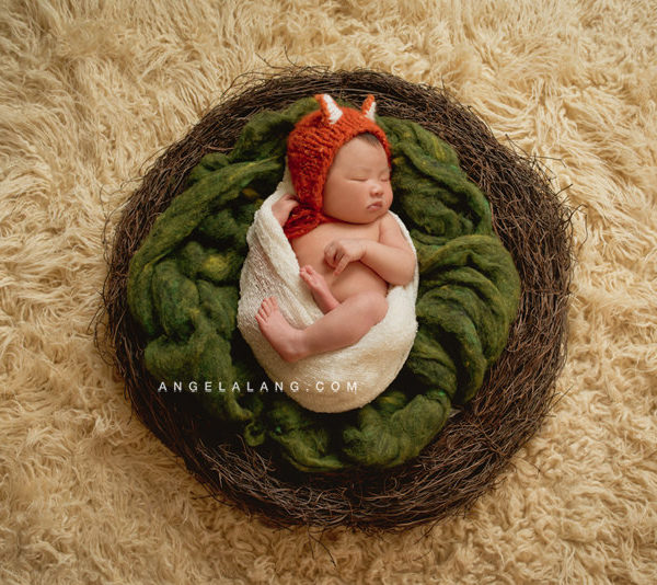 Wool Batting for Newborn Photography Prop, Moss Green, Newborn Fluff, Childrens Photo Prop, All Natural, Batts, Fleece, Fiber Arts